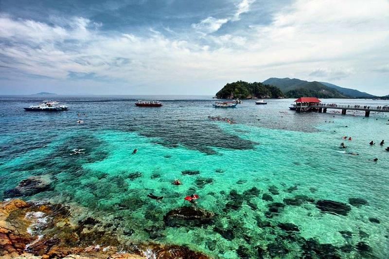 "Image result for terumbu karang pulau kapas"""